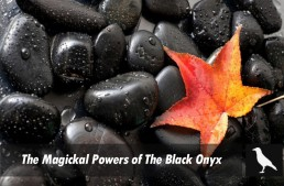 The Magickal Powers of The Black Onyx