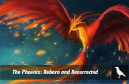 The Phoenix: Reborn and Resurrected