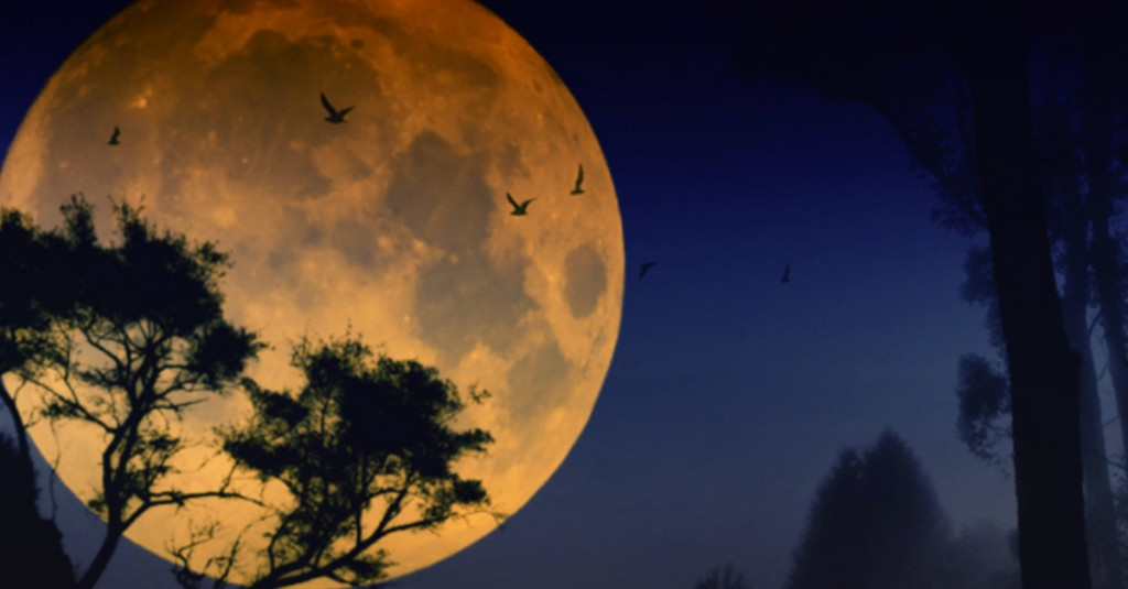 Strong Sun Moon