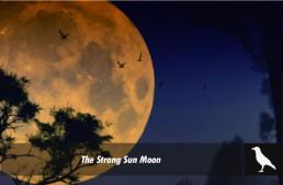 The Strong Sun Moon