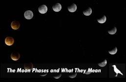 The Moon Phases and What They Mean